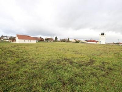 TERRAIN A VENDRE - ST GERMAIN DU BOIS - 1459 m2 - 33500 €