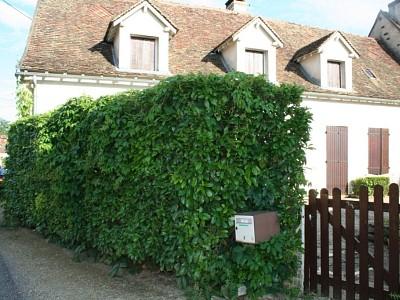 MAISON A LOUER - CORCELLES LES ARTS - 150 m2 - 950 € charges comprises par mois